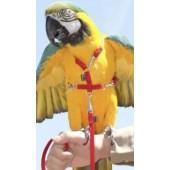 Шлейка для выгула попугаев размер large, прогулочная шлея для птиц